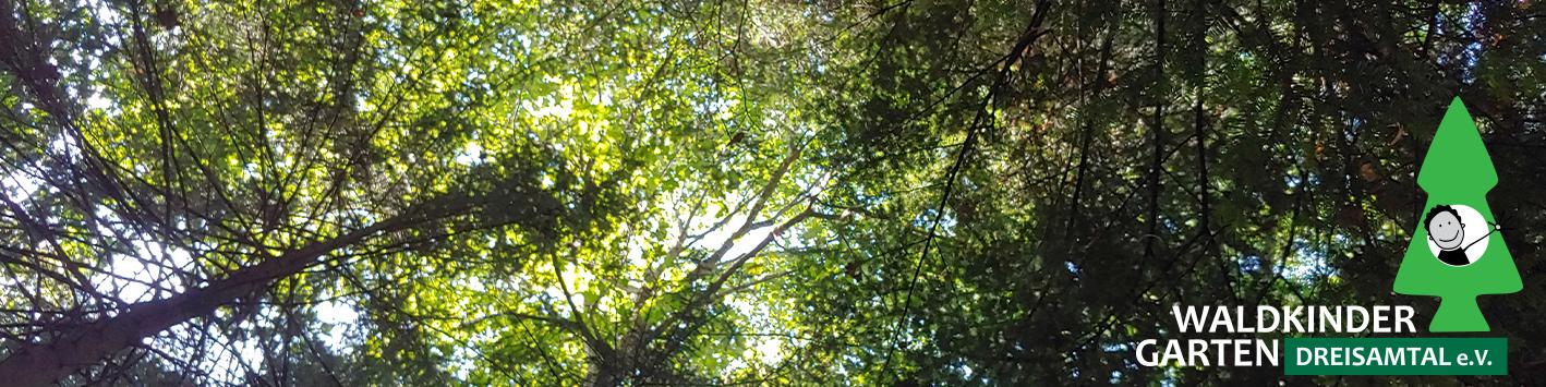 Waldkindergarten Dreisamtal